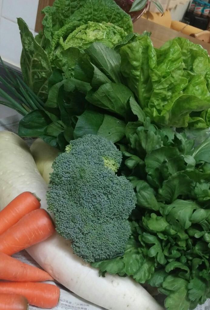 山盛り新鮮野菜(〃ω〃)